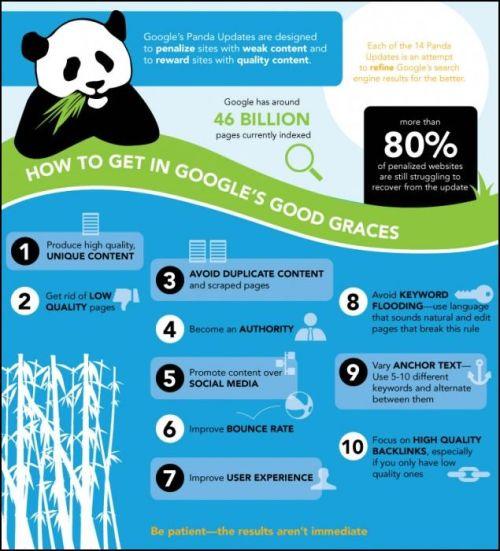 Google Panda infografía